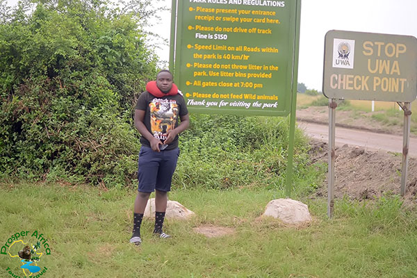 African Mountain Gorilla Tour